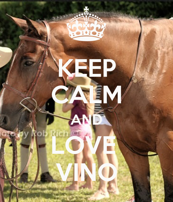 KEEP CALM AND LOVE  VINO