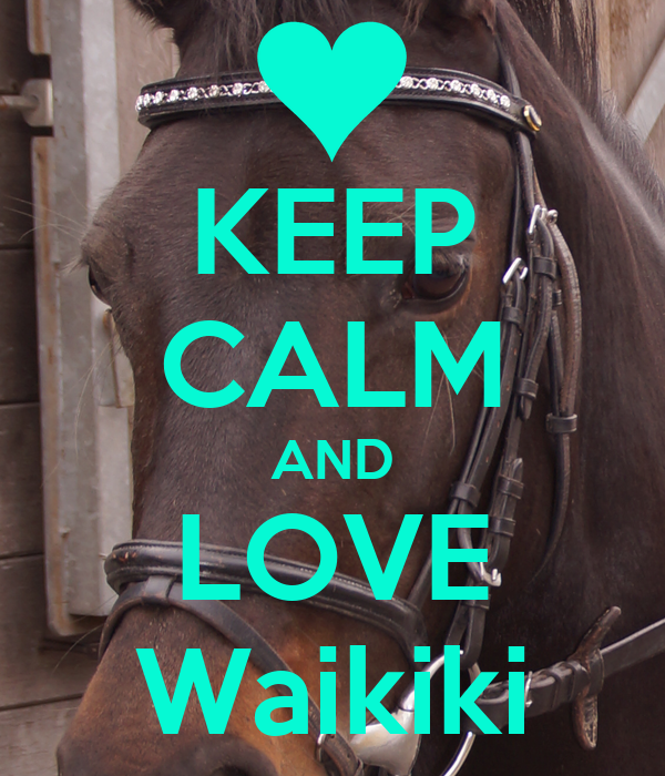 KEEP CALM AND LOVE Waikiki