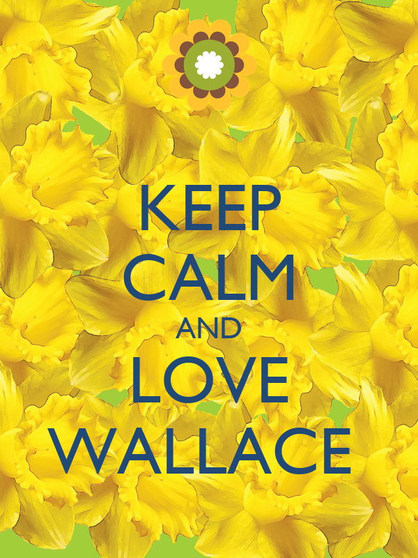 KEEP CALM AND LOVE WALLACE
