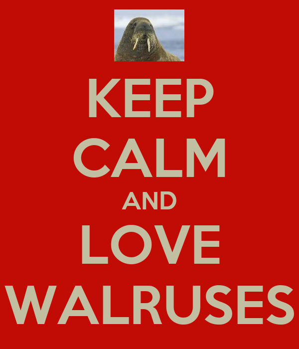 KEEP CALM AND LOVE WALRUSES