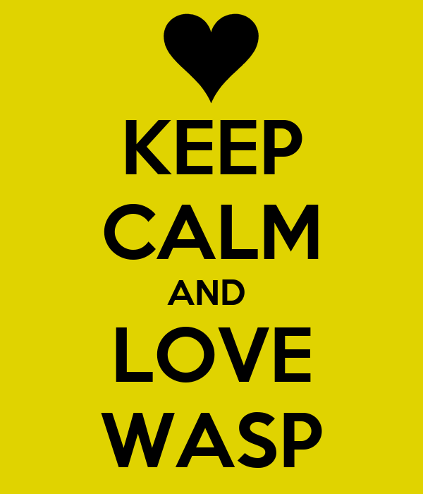KEEP CALM AND  LOVE WASP