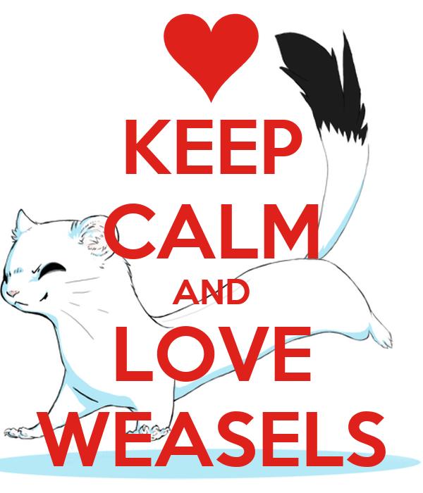 KEEP CALM AND LOVE WEASELS