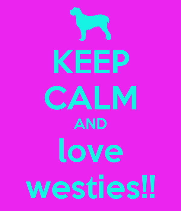 KEEP CALM AND love westies!!