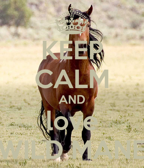 KEEP CALM AND love WILD MANE