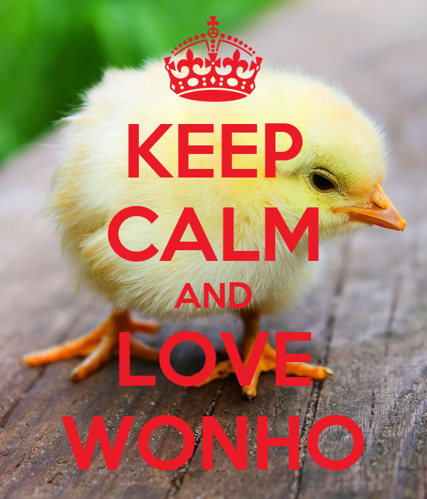 KEEP CALM AND LOVE WONHO