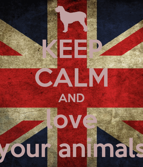 KEEP CALM AND love your animals