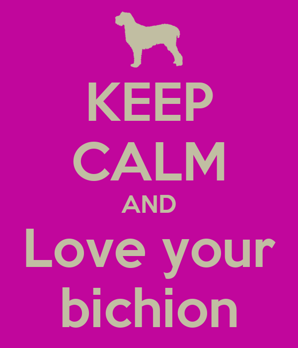 KEEP CALM AND Love your bichion