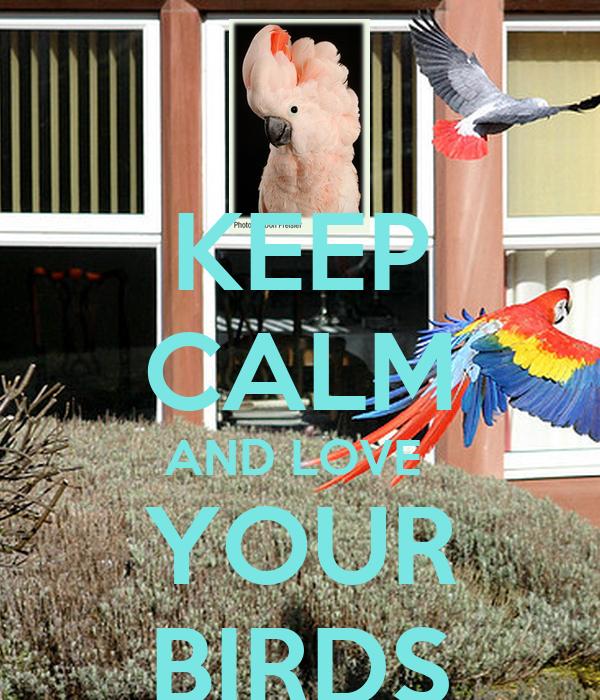 KEEP CALM AND LOVE  YOUR BIRDS