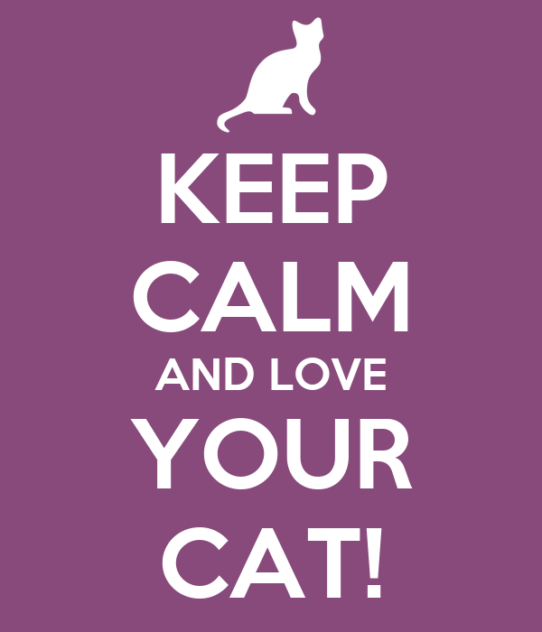 KEEP CALM AND LOVE YOUR CAT!