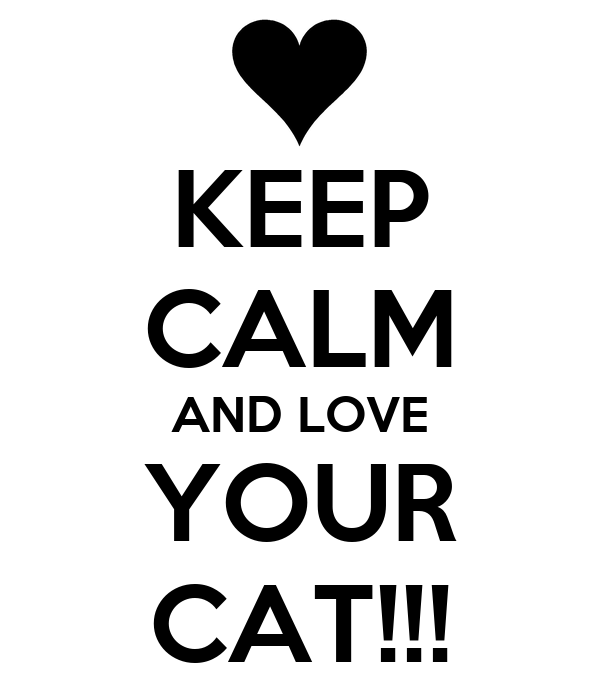 KEEP CALM AND LOVE YOUR CAT!!!