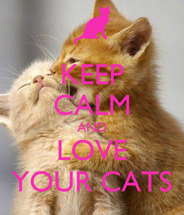 KEEP CALM AND LOVE YOUR CATS