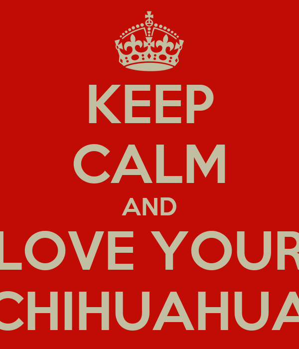 KEEP CALM AND LOVE YOUR CHIHUAHUA