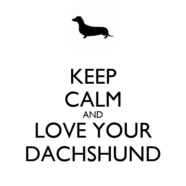 KEEP CALM AND LOVE YOUR DACHSHUND
