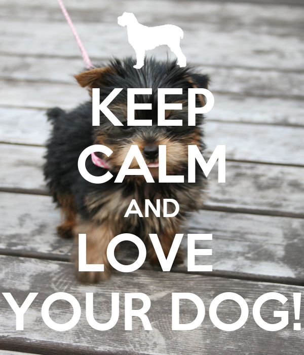 KEEP CALM AND LOVE  YOUR DOG!