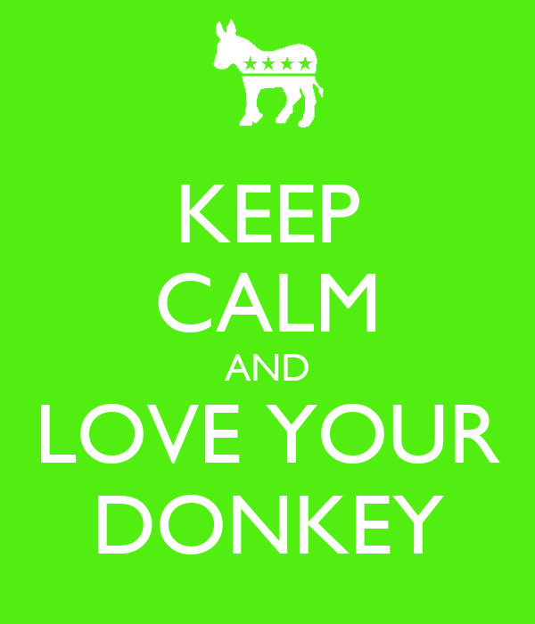 KEEP CALM AND LOVE YOUR DONKEY