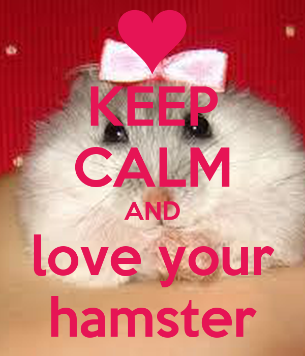 KEEP CALM AND love your hamster