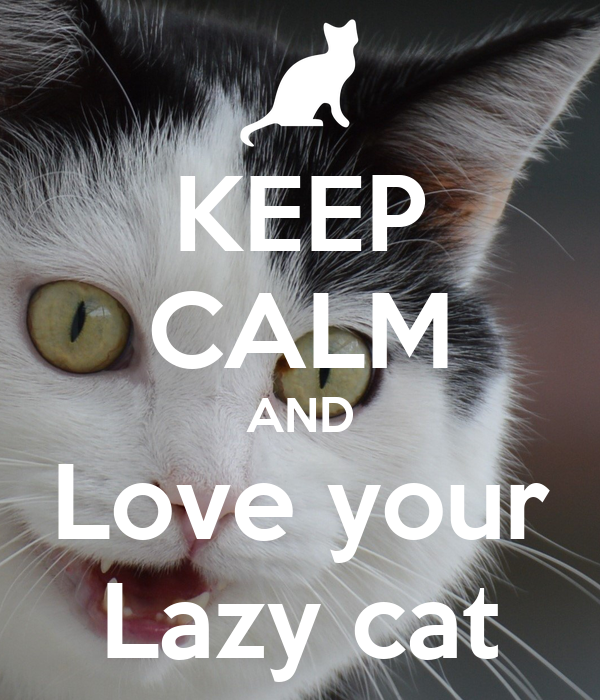 KEEP CALM AND Love your Lazy cat