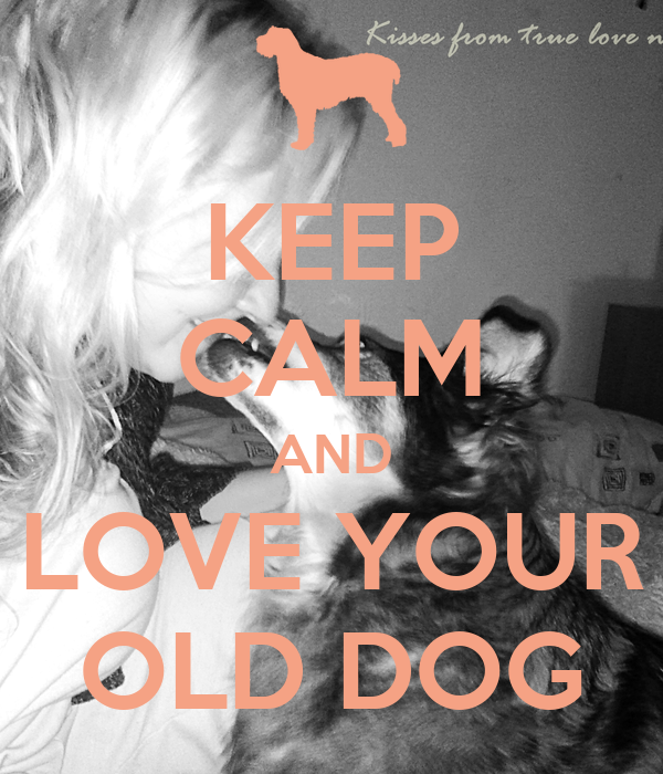 KEEP CALM AND LOVE YOUR OLD DOG