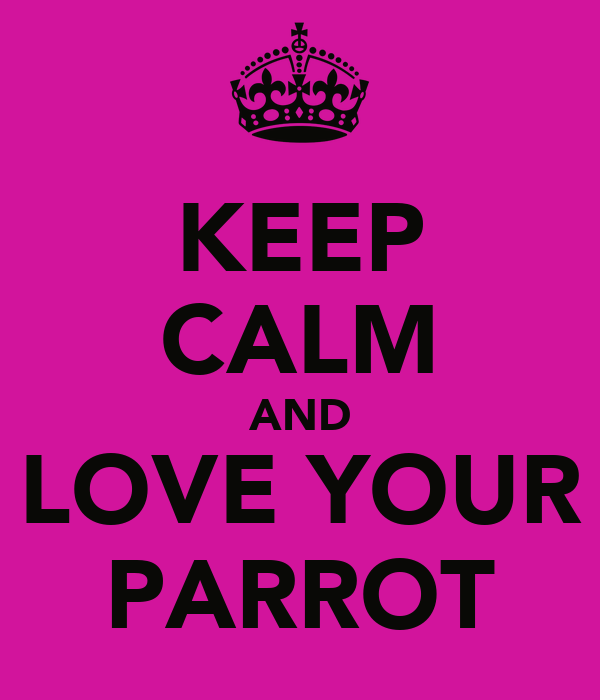 KEEP CALM AND LOVE YOUR PARROT