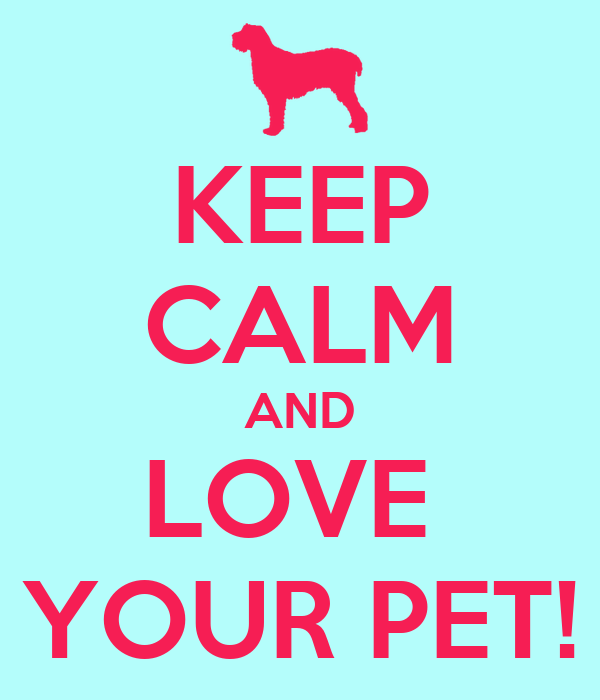 KEEP CALM AND LOVE  YOUR PET!