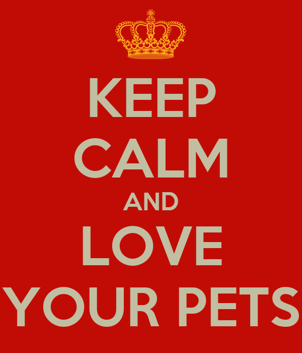 KEEP CALM AND LOVE YOUR PETS