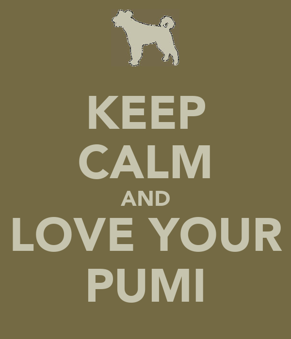 KEEP CALM AND LOVE YOUR PUMI