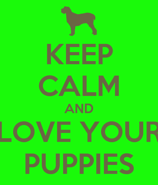 KEEP CALM AND LOVE YOUR PUPPIES