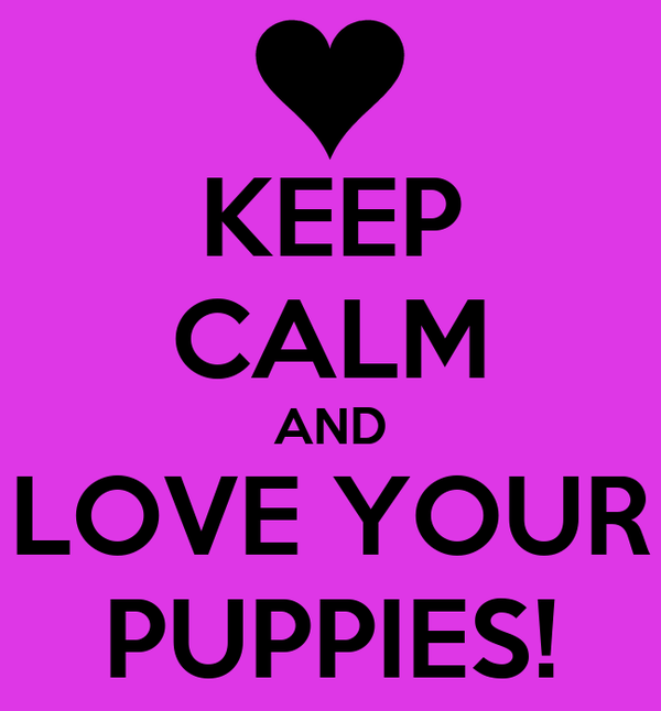 KEEP CALM AND LOVE YOUR PUPPIES!