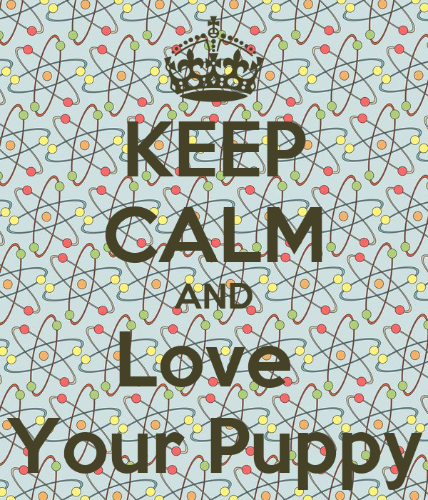 KEEP CALM AND Love  Your Puppy
