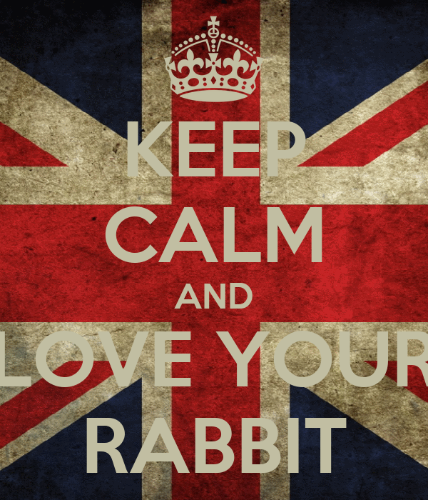 KEEP CALM AND LOVE YOUR RABBIT