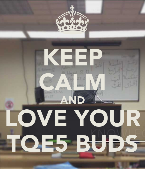 KEEP CALM AND LOVE YOUR TQE5 BUDS