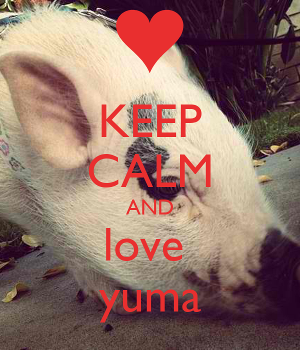 KEEP CALM AND love  yuma