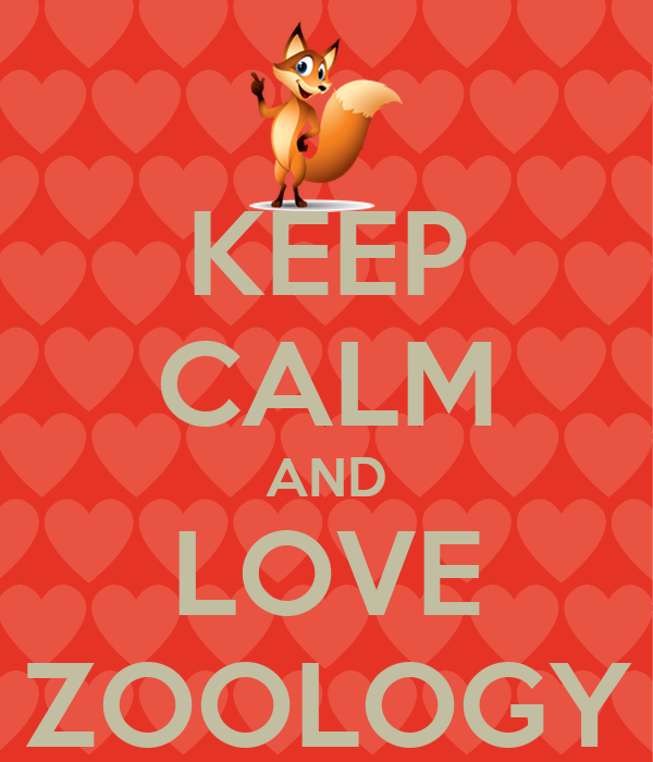 KEEP CALM AND LOVE ZOOLOGY