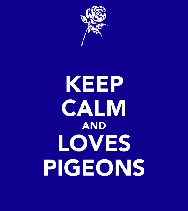 KEEP CALM AND LOVES PIGEONS