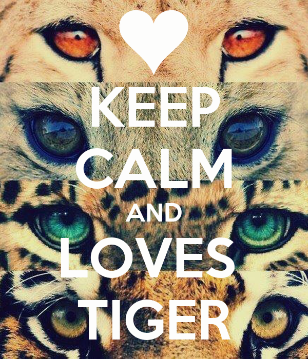 KEEP CALM AND LOVES  TIGER