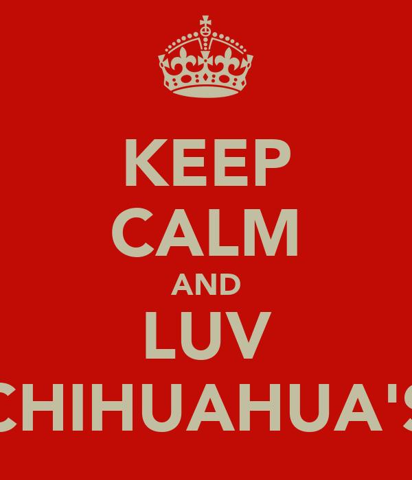 KEEP CALM AND LUV CHIHUAHUA'S