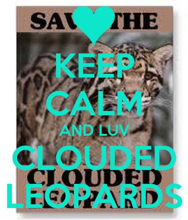 KEEP CALM AND LUV CLOUDED LEOPARDS