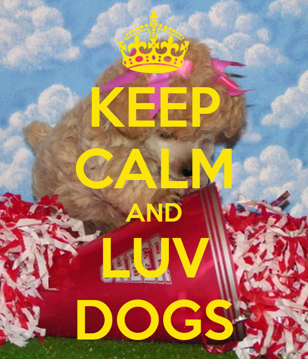 KEEP CALM AND LUV DOGS