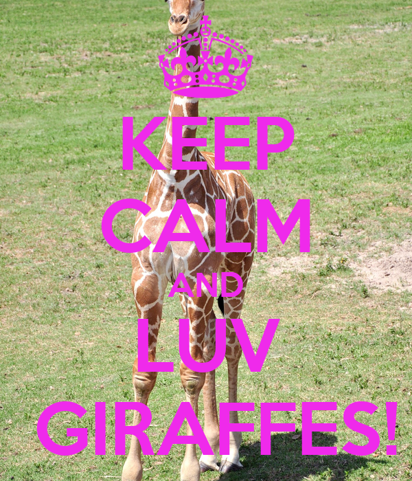 KEEP CALM AND LUV  GIRAFFES!