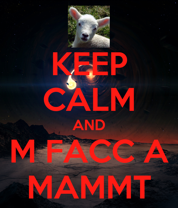 KEEP CALM AND M FACC A MAMMT