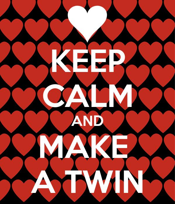 KEEP CALM AND MAKE  A TWIN