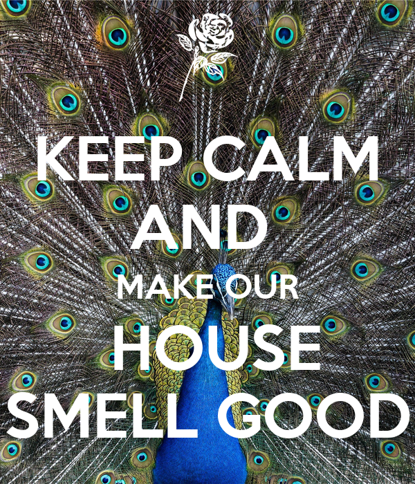 KEEP CALM AND  MAKE OUR  HOUSE SMELL GOOD
