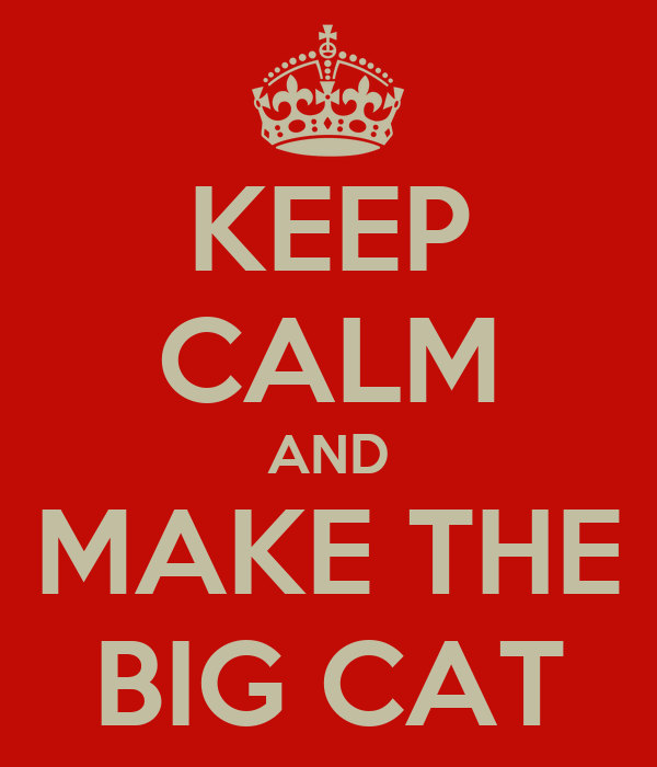 KEEP CALM AND MAKE THE BIG CAT