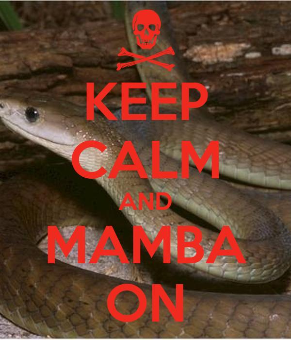 KEEP CALM AND MAMBA ON