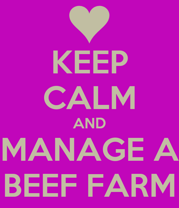 KEEP CALM AND MANAGE A BEEF FARM