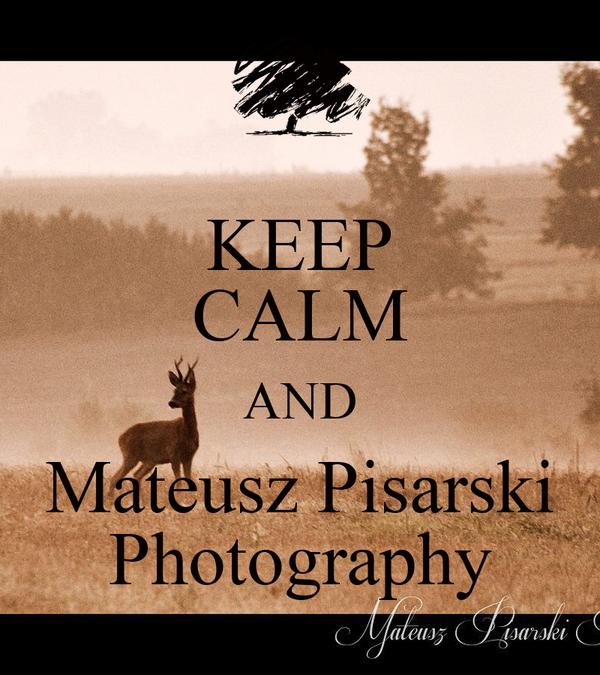 KEEP CALM AND Mateusz Pisarski Photography