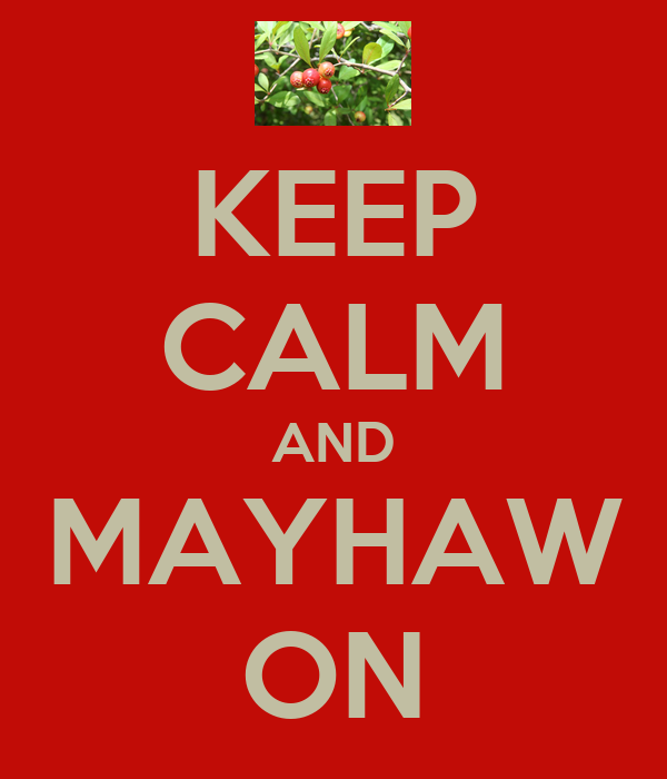 KEEP CALM AND MAYHAW ON
