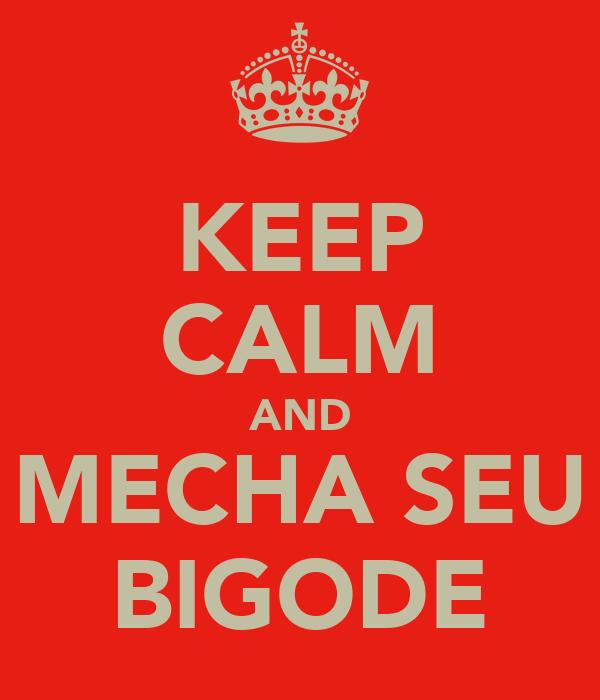 KEEP CALM AND MECHA SEU BIGODE