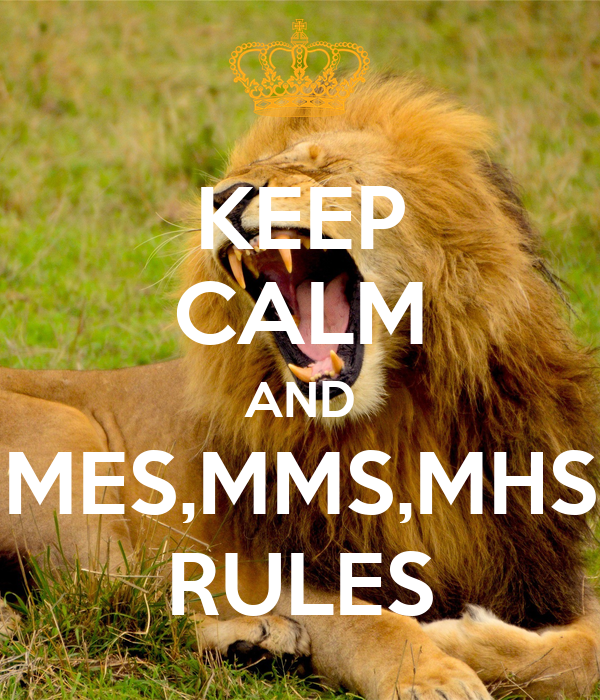 KEEP CALM AND MES,MMS,MHS RULES