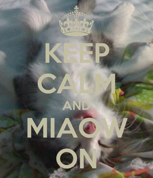 KEEP CALM AND MIAOW ON